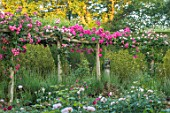 TOWN PLACE GARDEN, SUSSEX: PERGOLA, PATH, ARBOUR, ROSE - ROSA AMERICAN PILLAR, STATUE, CLIMBING, CLIMBERS