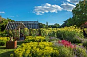 THE WALLED GARDEN AT COWDRAY, WEST SUSSEX: BORDER WITH ALCHEMILLA MOLLIS, THALICTRUM FLAVUM SSP. GLAUCUM, ENGLISH, COUNTRY, GARDENS, SUMMER, GREENHOUSE, GLASSHOUSE