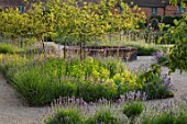 THE WALLED GARDEN AT COWDRAY, WEST SUSSEX: PATHS, RAISED CIRCULAR POOL, POND, WATER, BORDERS, LAVENDER, VERBENA BONARIENSIS, BLUE, FLOWERS, ENGLISH, COUNTRY, GARDEN