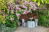 THE WALLED GARDEN AT COWDRAY, WEST SUSSEX: ROSE ARBOUR, ROSA APPLE BLOSSOM, TABLE, CHAIRS, PLACE TO SIT, AL FRESCO, DINING, ENGLISH, COUNTRY, GARDENS, SUMMER