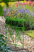 THE WALLED GARDEN AT COWDRAY, WEST SUSSEX: ENGLISH, COUNTRY, GARDEN, GREEN METAL CONTAINER ON PATIO PLANTED WITH AGASTACHE KUDOS MANDARIN. CONTAINERS, SUMMER