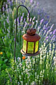 THE WALLED GARDEN AT COWDRAY, WEST SUSSEX: ENGLISH, COUNTRY, GARDEN, LANTERN, LAMP, LIGHTING, IN BORDER, LAVENDER, FLOWERS, ORNAMENTS