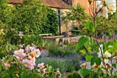 THE WALLED GARDEN AT COWDRAY, WEST SUSSEX: ENGLISH, COUNTRY, GARDEN, ROSES, LAVENDER, LION STATUE, RAISED WATER FEATURE, POOL, POND, SUMMER