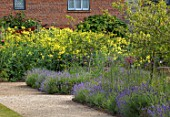 THE WALLED GARDEN AT COWDRAY, WEST SUSSEX: GRAVEL PATH, ENGLISH, COUNTRY, GARDEN, BORDER WITH THALICTRUM FLAVUM SSP. GLAUCUM, PERENNIALS, SUMMER, YELLOW FLOWERS, LAVENDER