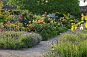 THE WALLED GARDEN AT COWDRAY, WEST SUSSEX: PATH, BORDERS WITH ROSES, LAVENDER, VERBENA BONARIENSIS, ENGLISH, COUNTRY, GARDENS, SUMMER