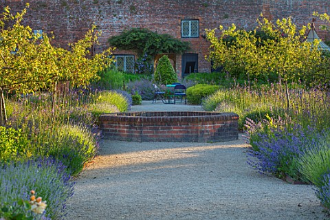 THE_WALLED_GARDEN_AT_COWDRAY_WEST_SUSSEX_PATH_BORDERS_WITH_LAVENDER_VERBENA_BONARIENSIS_BRICK_RAISED