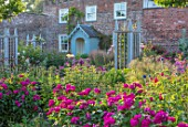 WYNYARD HALL, COUNTY DURHAM: ROSES , WOODEN TRELLIS SUPPORTS, WALL, WALLED ROSE GARDEN, SUMMER, JUNE, GARDENERS COTTAGE