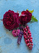 WYNYARD HALL, COUNTY DURHAM: STILL LIFE OF ROSE AND PERENNIALS PLANTED WITH THEM ON BLUE TABLE - DARK RED ROSE - ROSA MUNSTEAD WOOD