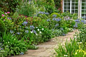 MORTON HALL, WORCESTERSHIRE: THE SOUTH GARDEN: PATHS, BORDERS, AGAPANTHUS BLUE TRIUMPHATOR. SUMMER, GARDENS, FLOWERING