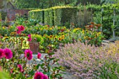 HAMPTON COURT CASTLE, HEREFORDSHIRE: THE KITCHEN GARDEN: HEDGES, LAWN, SUNFLOWERS, PINK DAHLIAS, LAVENDER, JULY, SUMMER, PATHS