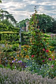 HAMPTON COURT CASTLE, HEREFORDSHIRE: THE KITCHEN GARDEN: DAHLIAS, SWEET PEAS GROWING UP TRIPOD. JULY, SUMMER