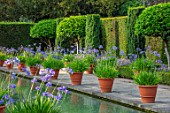 HAMPTON COURT CASTLE, HEREFORDSHIRE:THE DUTCH GARDEN, JULY - BLUE AGAPANTHUS IN TERRACOTTA CONTAINERS , RECTANGULAR FORMAL POOL, CANAL, GARDEN, ENGLISH, WATER, FORMAL