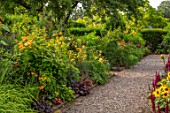 MORTON HALL GARDENS, WORCESTERSHIRE: KITCHEN GARDEN, BORDERS WITH ACHILLEA TERRACOTTA, LILIUM HENRYI, JULY, BORDERS, KITCHEN, PATHS