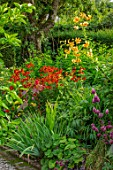 MORTON HALL GARDENS, WORCESTERSHIRE: KITCHEN GARDEN, BORDERS WITH RICINUS COMMUNIS, HELENIUM INDIAN SUMMER, LILIUM HENRYI, ALLIUM SPAEROCEPHALON, JULY, BORDERS, KITCHEN, PATHS