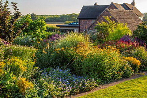 MEADOW_FARM_GARDEN_AND_NURSERY_WORCESTERSHIRE_BORDER_PERSICARIA_FIRETAIL_LYTHRUM_SALACARIA_ACER_PALM