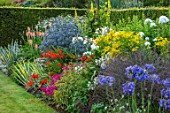 MEADOW FARM GARDEN AND NURSERY, WORCESTERSHIRE: AGAPANTHUS, VERBENA BAMPTON, SENECIO DORIA, CROCOSMIA BRESSINGHAM BLAZE, PHLOX GOLDMINE, ERYNGIUM PLANUM, KNIPHOFIA SAFRANVOGEL