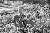 ASTON POTTERY, OXFORDSHIRE: BLACK AND WHITE PHOTOGRAPH OF STEPHEN BAUGHAN HOLDING SUNFLOWERS IN THE ANNUAL BORDERS, SUMMER, AUGUST