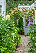 CLAUS DALBY GARDEN, DENMARK: BRICK PATH BESIDE KITCHEN WITH HYDRANGEAS IN VERSAILLES CONTAINERS BESIDE GREENHOUSE