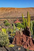 JARDIN DE CACTUS, LANZAROTE, CANARY ISLANDS: DESIGNER CESAR MANRIQUE -  CACTUS GARDEN, CANARY ISLANDS, DRY, DROUGHT, TOLERANT, ROCKS, STONES, CACTI. TERRACES, RED LAVA ROCKS