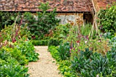 WARDINGTON MANOR, OXFORDSHIRE: PATH IN THE WALLED POTAGER, KITCHEN GARDEN - BORDERS WITH KALE AND SWEET PEAS ON TRIPODS. LATE, SUMMER, ANNUALS, WALLS, ENGLISH, COUNTRY, GARDEN