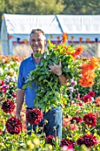 AYLETTS NURSERIES, HERTFORDSHIRE: PAUL COLLINS HOLDING CUT FLOWERS OF ORANGE DAHLIA