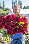 AYLETTS NURSERIES, HERTFORDSHIRE: PAUL COLLINS HOLDING CUT FLOWERS OF RED DAHLIA ARABIAN NIGHT