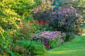 PASHLEY MANOR GARDEN, SUSSEX: LAWN, BORDER WITH SEDUMS, COTINUS. SEPTEMBER, ENGLISH, COUNTRY, GARDENS