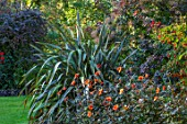PASHLEY MANOR GARDEN, SUSSEX: BORDER WITH PHORMIUM AND ORANGE FLOWERS OF DAHLIA BISHOP OF OXFORD. BORDERS, DAHLIAS, TUBEROUS, SEPTEMBER