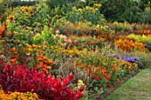 ASTON POTTERY, OXFORDSHIRE: ANNUAL BORDER IN SEPTEMBER. NICOTIANA, ZINNIAS, RUDBECKIA IRISH EYES, CELOSIA SCARLET PLUME, CLEOME, COSMOS, TAGETES TANGERINE GEM. ANNUALS, BORDERS