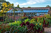 MORTON HALL GARDENS, WORCESTERSHIRE: KITCHEN GARDEN, POTAGER, CUTTING, AMARANTHUS PYGMY TORCH, TITHONIA, ORANGE, RED, FLOWERS, SUNFLOWERS, FENNEL, GREENHOUSE, ARCH, ARCHWAY