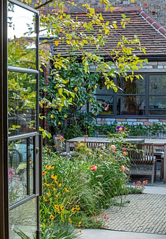 HORSE_SHOE_BEND_LONDON_DESIGNER_MARTHA_KREMPEL_VIEW_OUT_OF_KITCHEN_TO_COURTYARD_GARDEN_PATIO_BETULA_