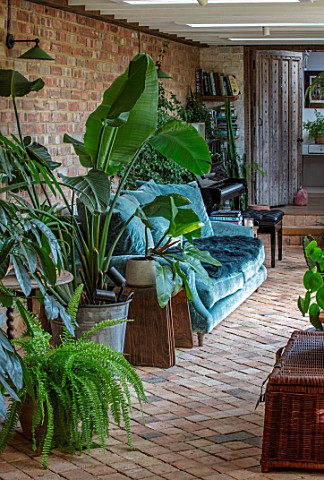 HORSE_SHOE_BEND_LONDON_DESIGNER_MARTHA_KREMPEL_INDOOR_CORRIDOR_WITH_HOUSEPLANTS_STRELITZIA_HOWEA_FOS