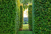RADCOT HOUSE, OXFORDSHIRE: VIEW THROUGH BEECH HEDGES, HEDGING TO STONE URN, CONTAINER IN LONG POND. VISTA, FOCAL POINT