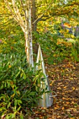 RADCOT HOUSE, OXFORDSHIRE: METAL CONE SEAT IN WOODLAND. SCULPTURE, AUTUMN, FALL, SCULPTURES, BIRCHES