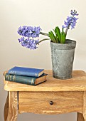 GIBBONS CROFT, WEST CLANDON, SURREY: BEDROOM, BOOKS AND BLUE HYACINTH CUT FLOWER IN METAL PLANTER, CONTAINER, WOODEN TABLE