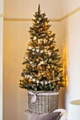 AMANDA KNOX HOUSE GRANTHAM: CHRISTMAS TREE IN LIVING ROOM