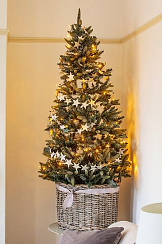 AMANDA_KNOX_HOUSE_GRANTHAM_CHRISTMAS_TREE_IN_LIVING_ROOM