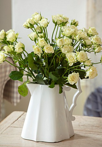 AMANDA_KNOX_HOUSE_GRANTHAM_CHRISTMAS_LIVING_ROOM_WHITE_JUG_WHITE_ROSES_INDOOR_FLOWERS_CUT_CUTTING