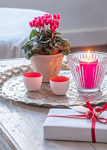 AMANDA_KNOX_HOUSE_GRANTHAM_FRONT_LIVING_ROOM_CHRISTMAS_CANDLES_CONTAINER_CYCLAMEN_INDOOR_FLOWERS_PRE