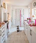AMANDA KNOX HOUSE GRANTHAM: DOG IN WHITE AND PINK KITCHEN, CHRISTMAS