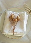MARBURY HALL, SHROPSHIRE: DESIGNER SOFIE PATON-SMITH - VICTORIAN CHRISTMAS,  DINING TABLE DECORATION, NAPKIN, POPPY SEED HEADS