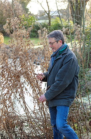 WARDINGTON_MANOR_OXFORDSHIRE_FLORIST_SHANE_CONNOLLY_CUTTING_FOLIAGE_IN_THE_GARDEN_SEED_HEADS_OF_ROSE