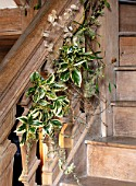 WARDINGTON MANOR, OXFORDSHIRE: FLORIST SHANE CONNOLLY - LIVING ROOM, HALLWAY - STAIRS WITH NATURAL CHRISTMAS DECORATIONS - HONESTY, IVY, LICHEN