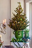 MERRYWOOD, JACKY HOBBS HOUSE, LONDON: DINING AREA, GREEN GLAZED CONTAINER, CHRISTMAS TREE, GREEN GLASS TEALIGHTS, VINTAGE BOOKS
