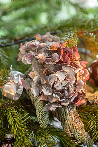 MERRYWOOD_JACKY_HOBBS_HOUSE_LONDON_CHRISTMAS_TREE_DETAIL_WITH_NATURAL_DECORATION_DRIED_HYDRANGEA_MET
