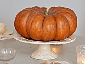 MERRYWOOD, JACKY HOBBS HOUSE, LONDON: WHITE KITCHEN, CHRISTMAS: PUMPKIN ON CERAMIC CAKE STAND ON TABLE