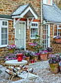 THE CONIFERS, OXFORDSHIRE: FRONT OF THE HOUSE, SNOW, CONTAINERS WITH CYCLAMEN, SKIMMIA, CANDLES, PATIO, GRAVEL, GARDEN, DECEMBER, CHRISTMAS
