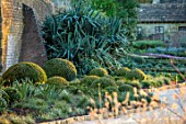 WAKEHURST, SUSSEX: THE WINTER GARDEN, JANUARY - BOX BALLS, MOUNDS, BUXUS, PATH, YUCCA FILAMENTOSA
