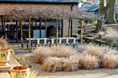THE OLD RECTORY, QUINTON, NORTHAMPTONSHIRE: DESIGNER ANOUSHKA FEILER: GRASSES, FROST, WINTER, SUNKEN PATIO, TABLE, CANOPY OF PLANE TREES, PLATANUS ACERIFOLIA, PENNISETUM HAMELN