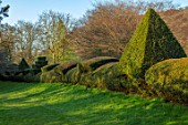LITTLE MALVERN COURT, WORCESTERSHIRE: CLIPPED, YEW, TOPIARY, HEDGES, HEDGING, SPRING
